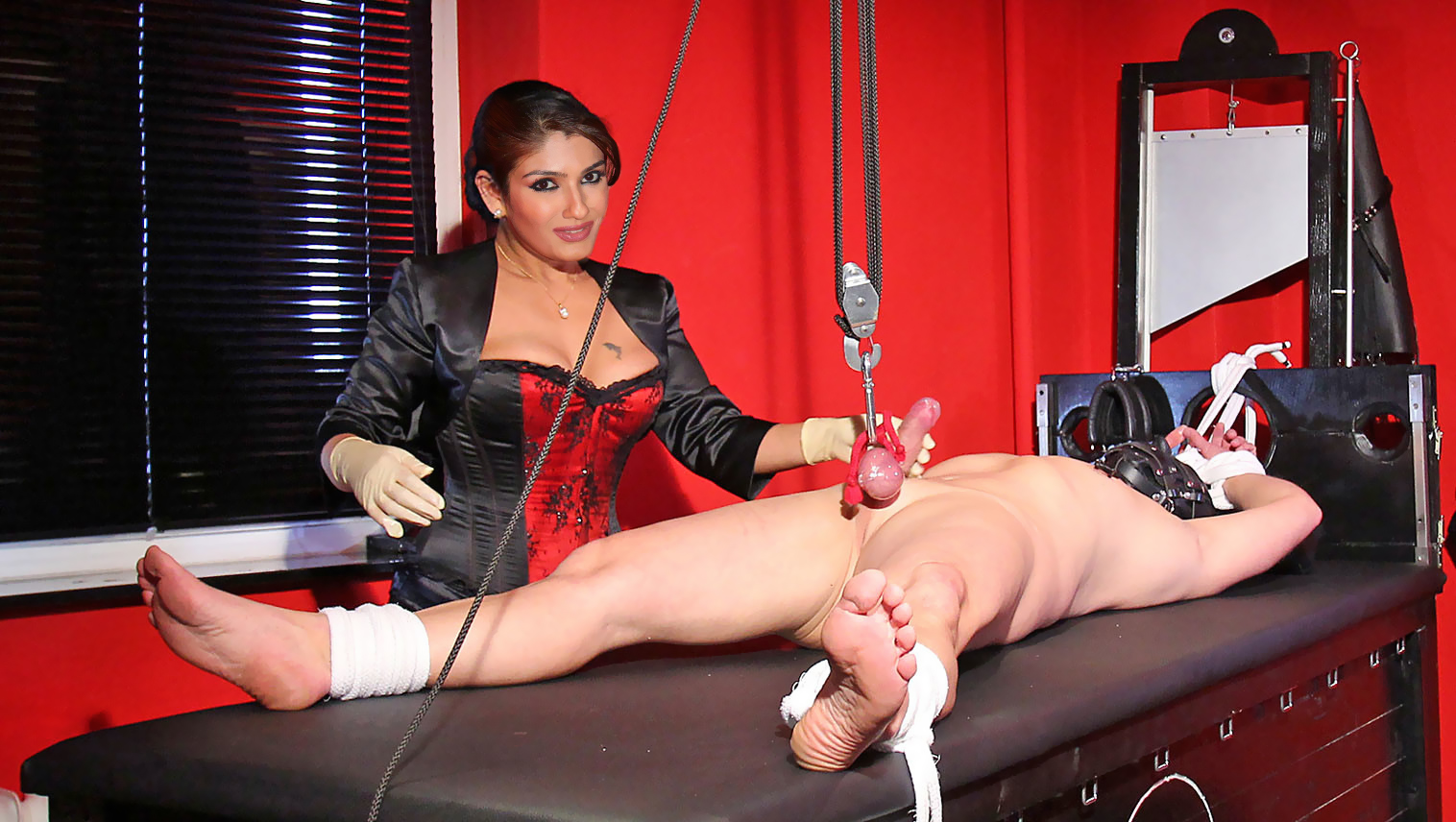picture-castrated-real-femdom-transplants