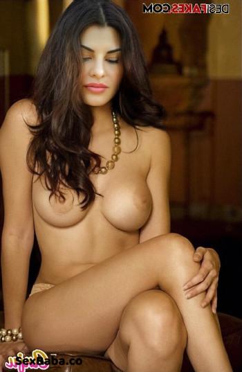 [Image: Jacqueline-Fernandez-Nude-Fakes-13.md.jpg]